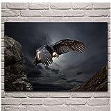 Cóndor andino animal pájaro más grande volando ilustraciones arte de la pared Poster Decoracion de la sala de estar Decoracion del hogar 60x80 cm x1 Sin marco