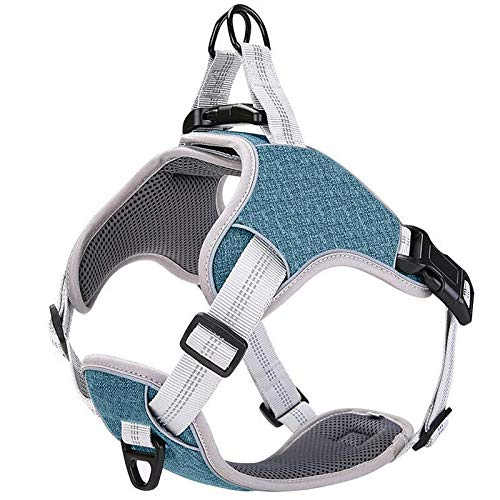 Vest Harness Dog