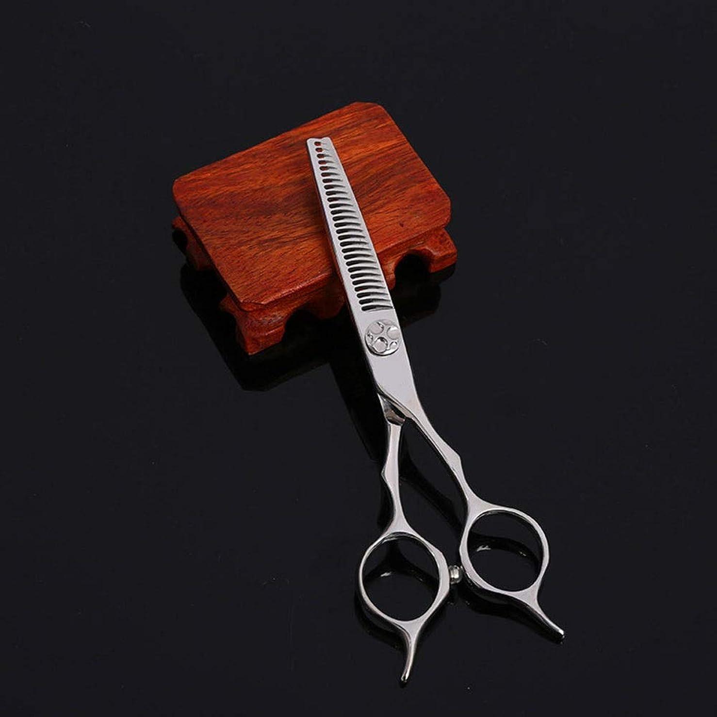 産地消毒する服を片付ける5.5インチの美容院のステンレス鋼のヘアカットの専門用はさみ モデリングツール (色 : Silver)