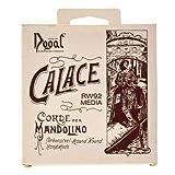 Dogal RW92 Calace - Mandolina