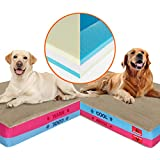 Best Cooling Orthopedic Dog Bed