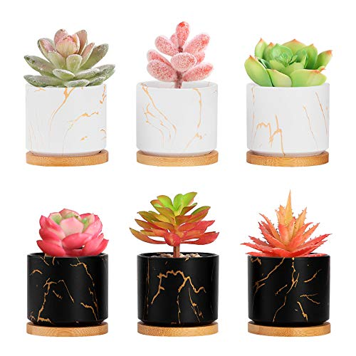 Danolt Macetas de Suculentas de Cerámica Conjunto de 6 Cactus Flor Macetas Envase, Mini maceta de cerámica con Bandejas de Bambú
