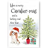 Cavalier King Charles Spaniel Christmas Card, Funny Dog Greetings Card, King Charles Spaniel Dog Card,Cavalier King Charles Spaniel Dog, Dog Cards, Dog Christmas Cards.