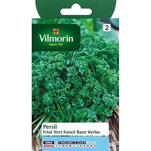VILMORIN - Sachet aromatique de Persil Frisé vert foncé