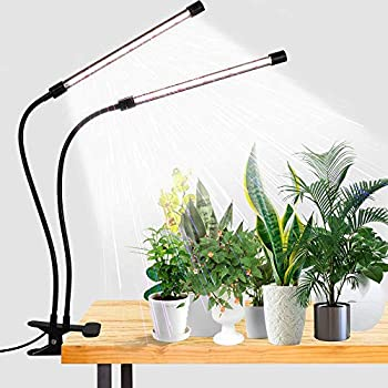 LED Grow Light,6000K Full Spectrum Clip Plant Growing Lamp with White Red LEDs for Indoor Plants,5-Level Dimmable,Auto On Off Timing 4 8 12Hrs