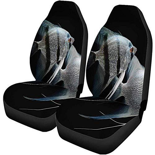 Autostoelhoezen Vis Engel Zilver Angel vis Aquarium Zoetwater Klimmen Black Dier Universal auto voorstoelbescherming