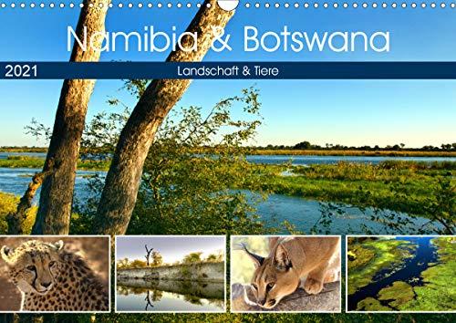Namibia & Botswana (Wandkalender 2021 DIN A3 quer)