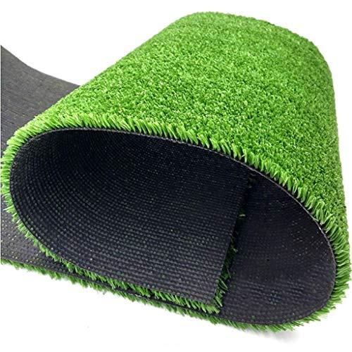 Mysida Artificial Grass WJ Kunstrasen-Aufstellungsort-Einschließungs-Rasen-Innen- und im Freiendekoration-Rasendach-Flugabwehrplastikrasenteppich-Dekoration (Color : T 1cm, Size : 2 * 1m)
