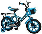 Ollmii Neostii 14 Inches Kids Cycle Blue for 3 to 5 Years Boys and Girls