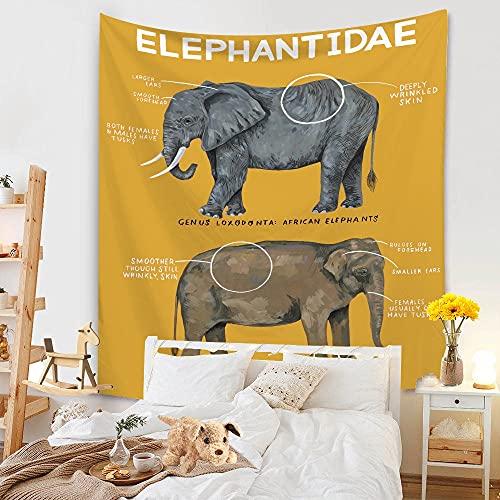 Tapiz nórdico arcoíris sol y luna elefante tapiz de pared tapiz de playa alfombra de fondo tapiz de tela A14 130x150cm