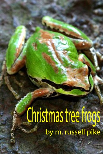 The Christmas tree frogs