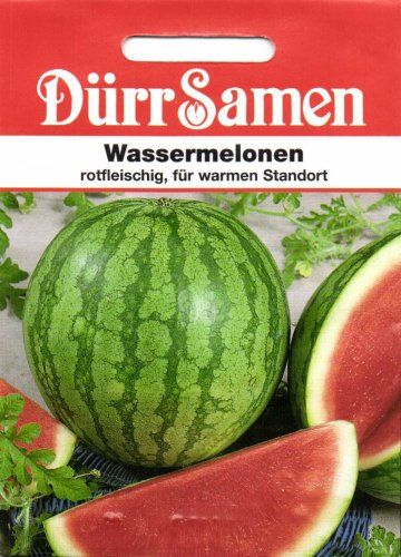 Dürr Samen 1886 Wassermelone Crimson Sweet (Wassermelonensamen)