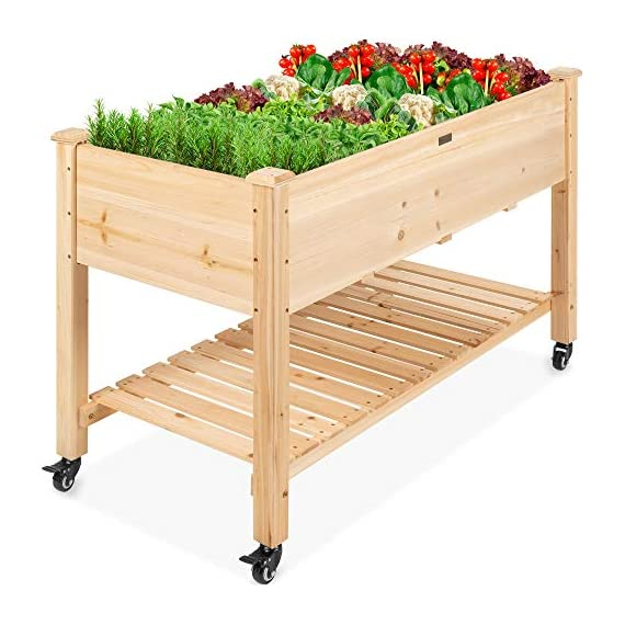 Best Choice Products Raised Garden Bed 48x24x32-inch Mobile Elevated Wood Planter w/Lockable Wheels, Storage Shelf… 1 EASY MOBILITY: Built with a set of locking wheels to move the planter from place to place and capture the right amounts of sun and shade ERGONOMIC STRUCTURE: Stands 32 inches tall, making it perfect for those who struggle to bend down or lean over while gardening GARDEN BED LINER: Separates wood from the soil, keeping planter in excellent condition and preventing weeds and pests from interfering with plant growth