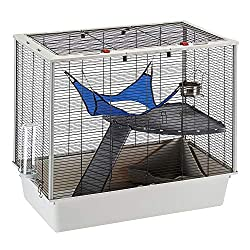 best rat cage for 2 rats