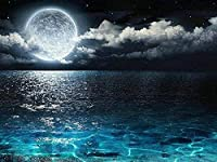 DIYデジタル絵画Diyデジタル油絵壁画家の装飾アクリル画青い海の上の満月40X50cm