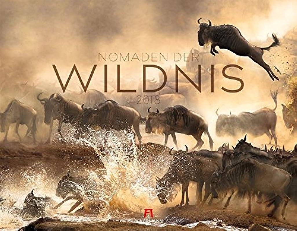 方程式今明示的にNomaden der Wildnis 2018