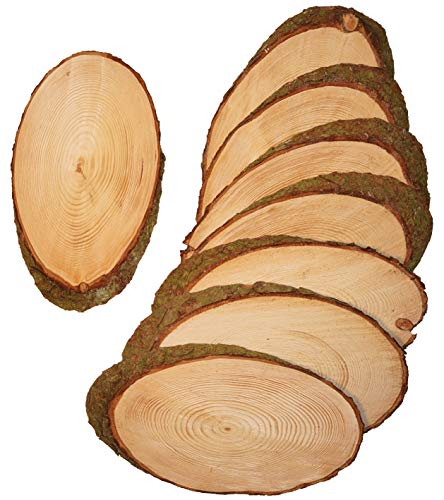 Mercarimus 8 Stück ovale Holzscheiben Länge ca. 25 cm Breite ca. 15 cm Baumscheiben Astscheiben mit Rinde Rindenscheibe Deko Basteln Floristik Hochzeit