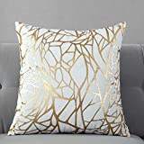 TAOSON Pack of 2,Irregular Abstract Lines Geometric Bronzing Printed Cozy Soft Throw Pillow Cases Cushion Covers Shells for Sofa Couch Bed Home Decoration 18 x 18 Inches, White and Gold