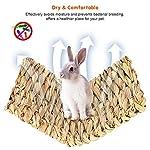 Bolonbi Lot de 2 lits à mâcher pour animaux en herbe tissée naturelle pour lapin, cochon d'Inde, perroquet, lapin, hamster, rat #1