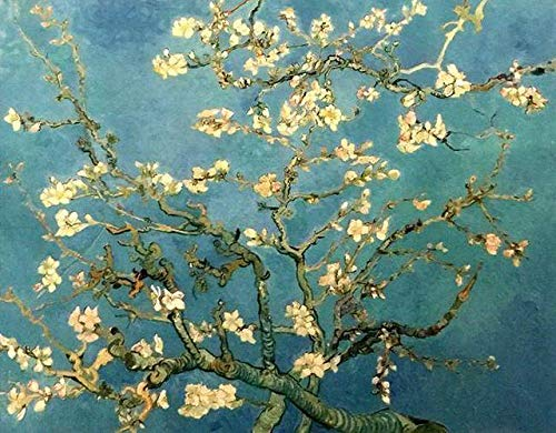 "Paint by Numbers for Adults by BANLANA, Van Gogh Series, DIY Adult Paint by Number Kits for Beginners on Canvas Rolled Unframed 16"" by 20"" (Almond Blossom Tree)"