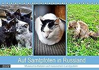 Auf Samtpfoten in Russland - Museums-Katzen auf russischen Landguetern (Tischkalender 2022 DIN A5 quer): Katzen auf den ehemaligen Landguetern russischer Dichter (Monatskalender, 14 Seiten )