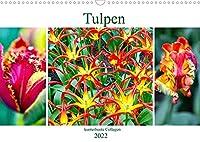Tulpen - kunterbunte Collagen (Wandkalender 2022 DIN A3 quer): Kunterbunte Schoenheiten - Tulpencollagen. (Monatskalender, 14 Seiten )