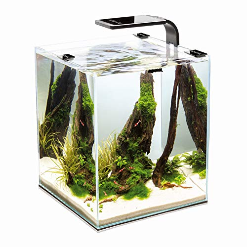 SHRIMP SET SMART 2 LED 20 WHITE AQUAEL CARIDINE PESCI PIANTE ACQUARIO COMPLETO