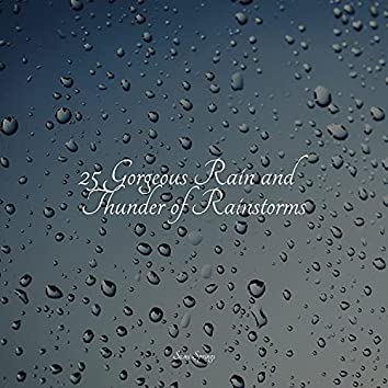 25 Gorgeous Rain and Thunder of Rainstorms
