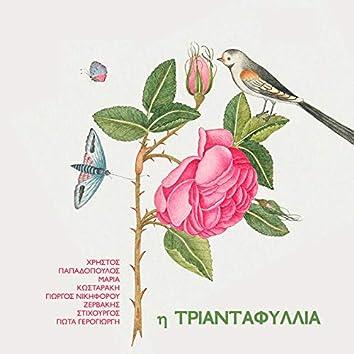 I Triantafyllia