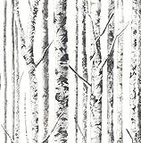 Black White Wallpaper Tree Wallpaper Birch Wallpaper Metallic Wallpaper (White, Black, Gray)