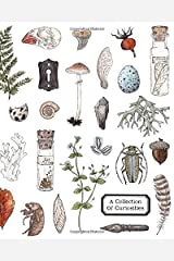 A Collection of Curiosities: A Sketchbook for Collecting Interesting Objects and Bits of Natural History Paperback