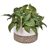 Nrkin Cesta de tela de algodón para plantas, maceta, maceta, cesta de almacenamiento para macetas, pequeñas plantas, macetas, manualidades, juguetes, decoración del hogar