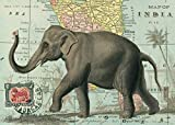Cavallini Papers & Co. Elephant on Map of India Vintage Poster Print 20' x 28'