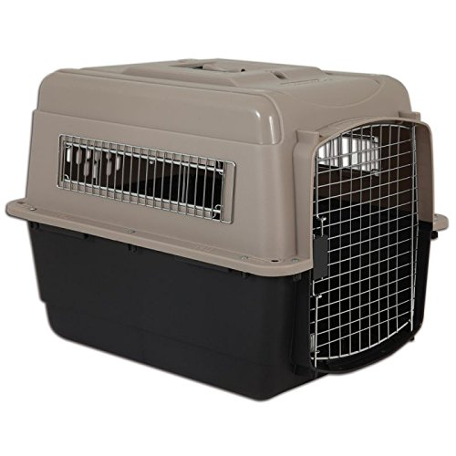Wangado - Trasportino per cani in plastica robusta omologato IATA, ideale per il trasporto in aereo, in treno o in auto, con finestre laterali e grande porta anteriore - Made in USA. L 71 x P 52 x H x 55 cm