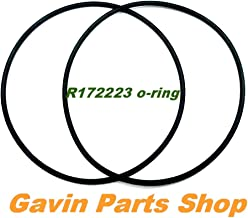 Gavin parts shop (2/Pack) R172223 Replacement Pool/Spa Leaf Canister Filter O-Ring for Pentair Compatibility Hayward AXW542 Waterway 805-0360
