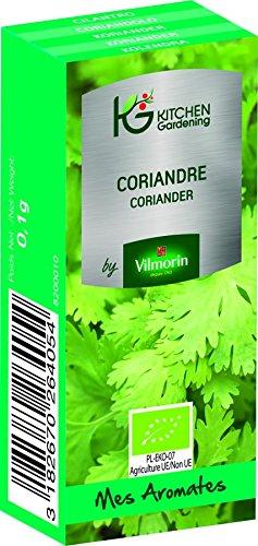 KG BY VILMORIN 8200010 Jardinières Coriandre Bio Vert 7 x 3 x 2 cm