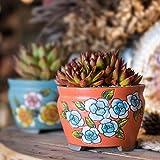 Sungmor Set de 4 - Hermosa Maceta de cerámica de Estilo Artesanal de Flores - 14.1CM Maceta de Cactus suculenta - Bonita Maceta de alféizar de Escritorio - Idea de Regalo Simple