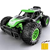 Remote Control Car, Gizmovine 1:14 Scale Large Electric Drift RC Cars, High Speed Waterproof Race Cars for Boys Adults, 2.4GHz Off Road RC Trucks Buggy Toys with 2 Rechargeable Battery (Green)