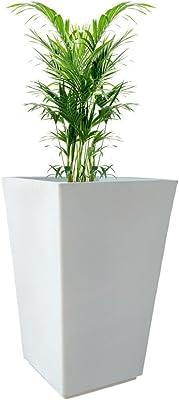 Yuccabe Italia Fox B TK 30 Inches White Square Planter