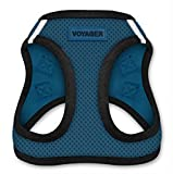 Best Pet Supplies Voyager Step-In Air Dog Harness - All Weather Mesh, Step In Vest Harness for Small and Medium Dogs by Best Pet Supplies - Blue Base, Medium (Chest: 16' - 18') (207-BUB-M)