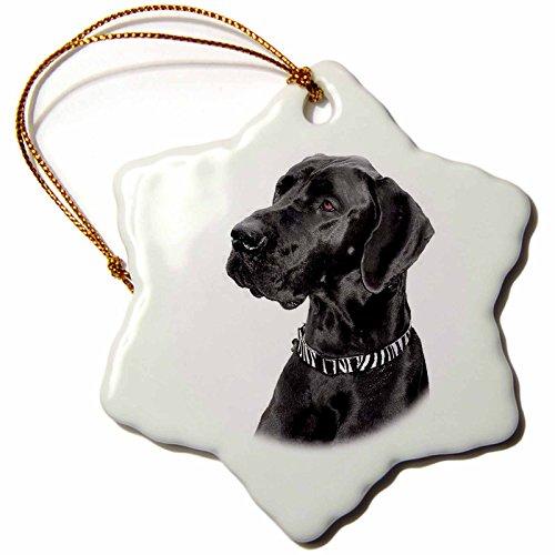 3dRose Black Great Dane Snowflake Porcelain Ornament, 3-Inch