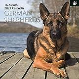 2021 Wandkalender - Schäferhund-Kalender, 30 x 30 Zentimeter Monatsansicht, 16-Monat, Hunde und Haustiere Thema, Enthält 180 Aufkleber auf Englisch