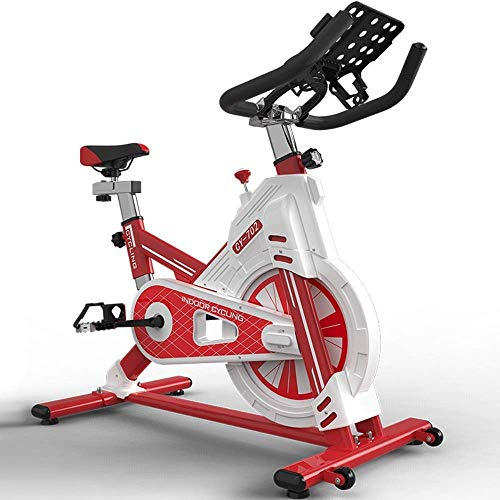 DSHUJC Bicicleta estática Bicicletas de Fitness 200KG Soporte de Carga para el hogar Bicicleta de Spinning Bicicleta de Ejercicio Deportiva, Equipo de pérdida de Peso