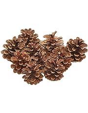 OULII Conos de pino secado Natural 48pcs Navidad colgante adorno colgantes adornos navideños (marrón)