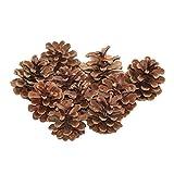 ROSENICE Pine Cone Crafts Adorno colgante de Navidad 48pcs Natural seco piña decoración (marrón)