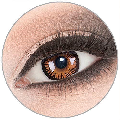 Farbige braune 'Eternal Amber' Kontaktlinsen von 'Evil Lens' zu Fasching Karneval Halloween 1 Paar braune schwarze Crazy Fun Kontaktlinsen mit Behälter ohne Stärke