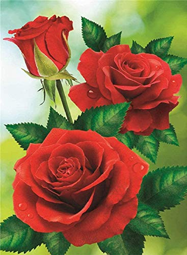 Xhabbaa 5D Completo Grande Pintura De Diamantes Rosa Roja Mosaico Punto De Cruz Cristal Redondo Establece Bordado Decorativo 40X50Cm(16X20 Pulgadas)