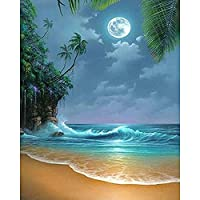 DIYクロスステッチキットダイヤモンド絵画 ラインストーン塗装キット用大人と子供刺繍ドアートクラフト家の装飾 海辺と月(30x40)CM