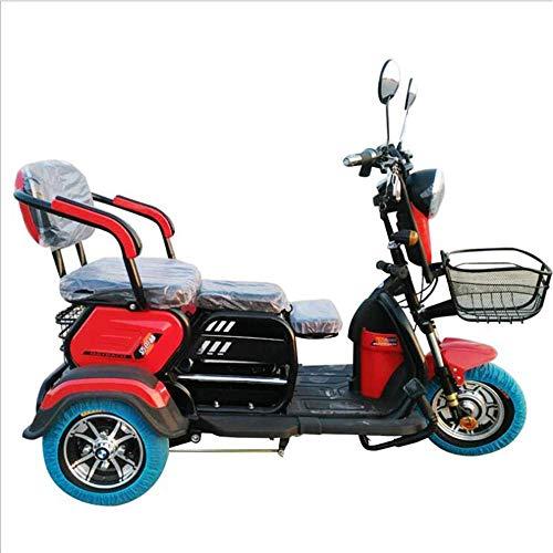XYDDC Adulto Triciclo eléctrico al Aire Libre Ancianos Viaje discapacitados móvil Vespa...