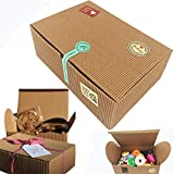 Chilly Treat Gift Boxes, Set of 10 Bakery Boxes Decorative Cupcake Cookies Chocolate Boxes, 37...